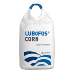 Lubofos Corn